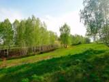 Коттеджный поселок Березовый рай