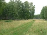 Коттеджный поселок Живой лес